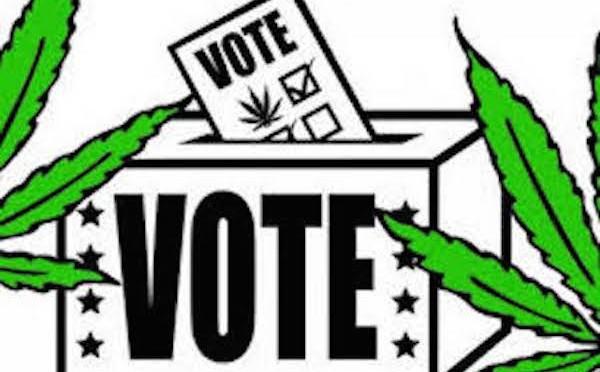Κάνναβη και εκλογές