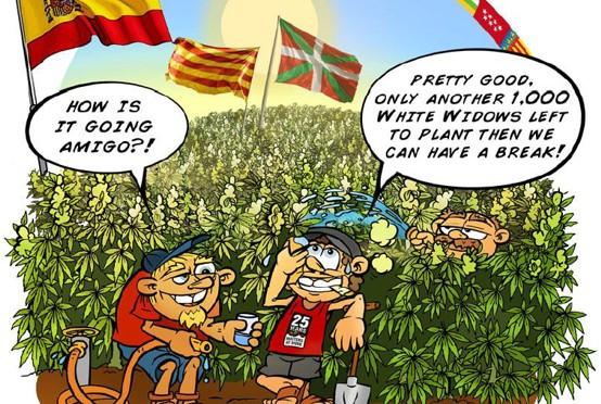 Η κατάσταση της κάνναβης στην Ισπανία σήμερα – μια ανασκόπηση