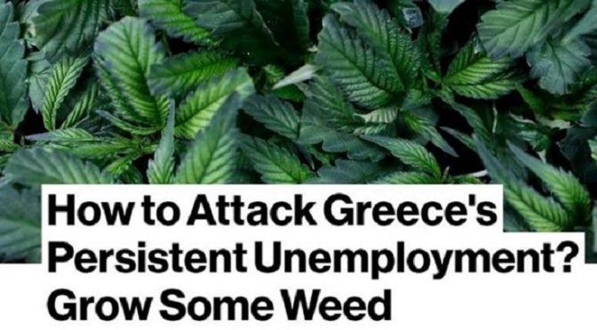Κάνναβη και ανεργία