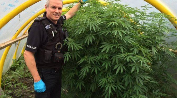 Όταν η αγγλική αστυνομία σταμάτησε να διώκει το χόρτο